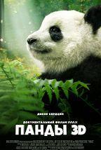 Панды 3D (0+) постер плакат