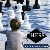 Набор в группу  «Шахматы на английском языке» постер плакат