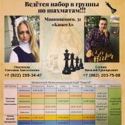 Набор детей в группы по шахматам постер плакат