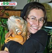 """Выставка экзотических животных """"Необычный зООпарк"""" постер плакат"""