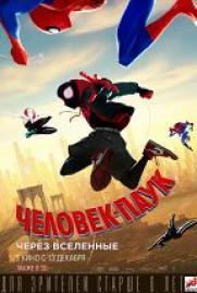 Человек-паук: Через вселенные (6+) постер плакат