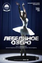 TheatreHD: Лебединое озеро постер плакат