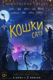 Кошки постер плакат
