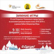 Фестиваль «Зимние игры» постер плакат