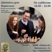 Набор взрослых на курс по ШАХМАТАМ  постер плакат