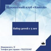 Шахматы постер плакат
